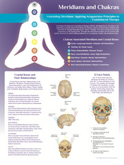 Meridians and Chakras Poster